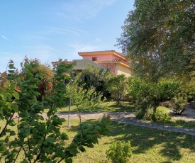 Holiday home in Torre Delle Stelle (Maracalagonis) 36747