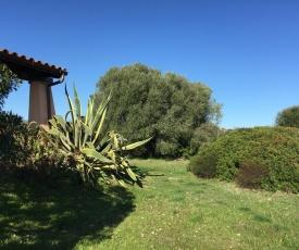 Apartment in Perd'e Sali/Sardinien 36799